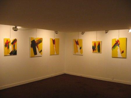 Exposition personnelle rue de Seine à paris, Galerie Etienne de causans, novembre 2009